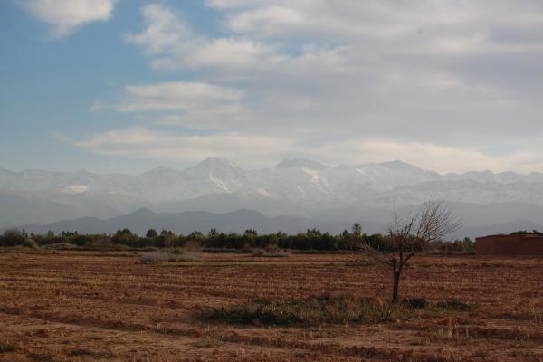 Terrain - Ferme berbere